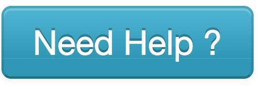 Screenshot of Need Help button